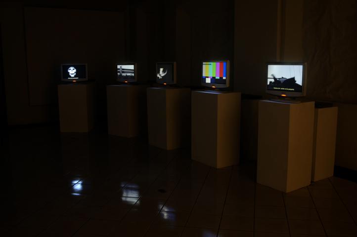 S/T. Video instalación. Medidas variables. 2007.